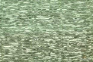 Krepový papír role 50cm x 2,5m - hráškově zelený 562